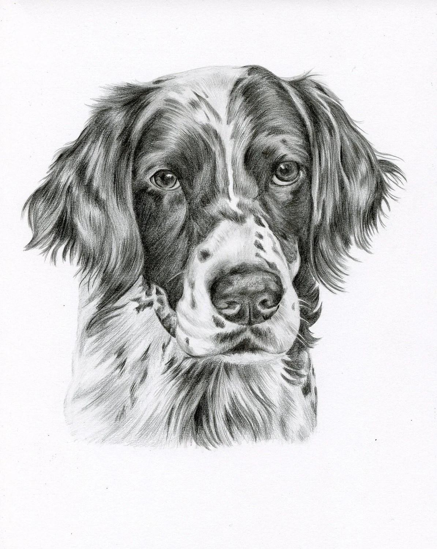 Dog Drawings Pencil Pot