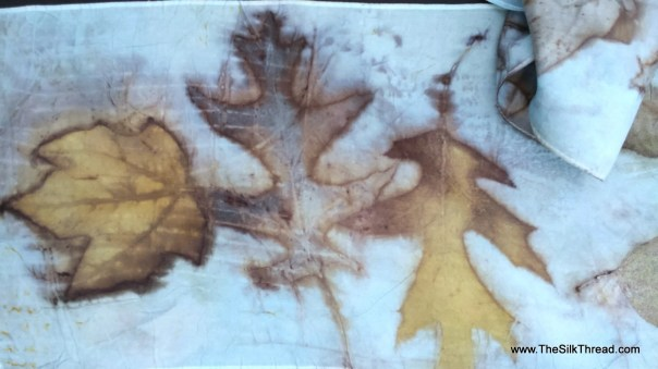 """Blue Silk Scarf, eco printed maple, oak leaf designs, colors imprinted from Nature, 8"""" x 72"""", Natural silk art by artist,OOAK, USA ship FREE"""