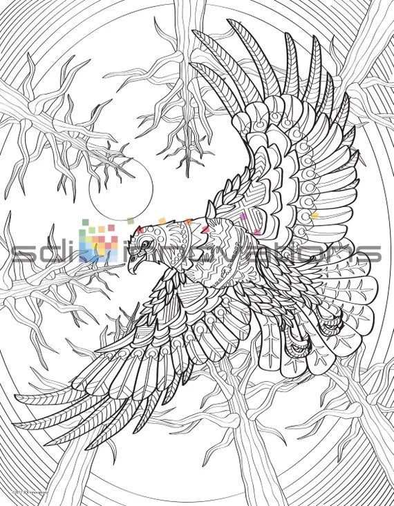 native american bald eagle adult coloring page