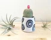 Small Cactus Planter Succ...