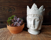 Small White King Buddha  ...
