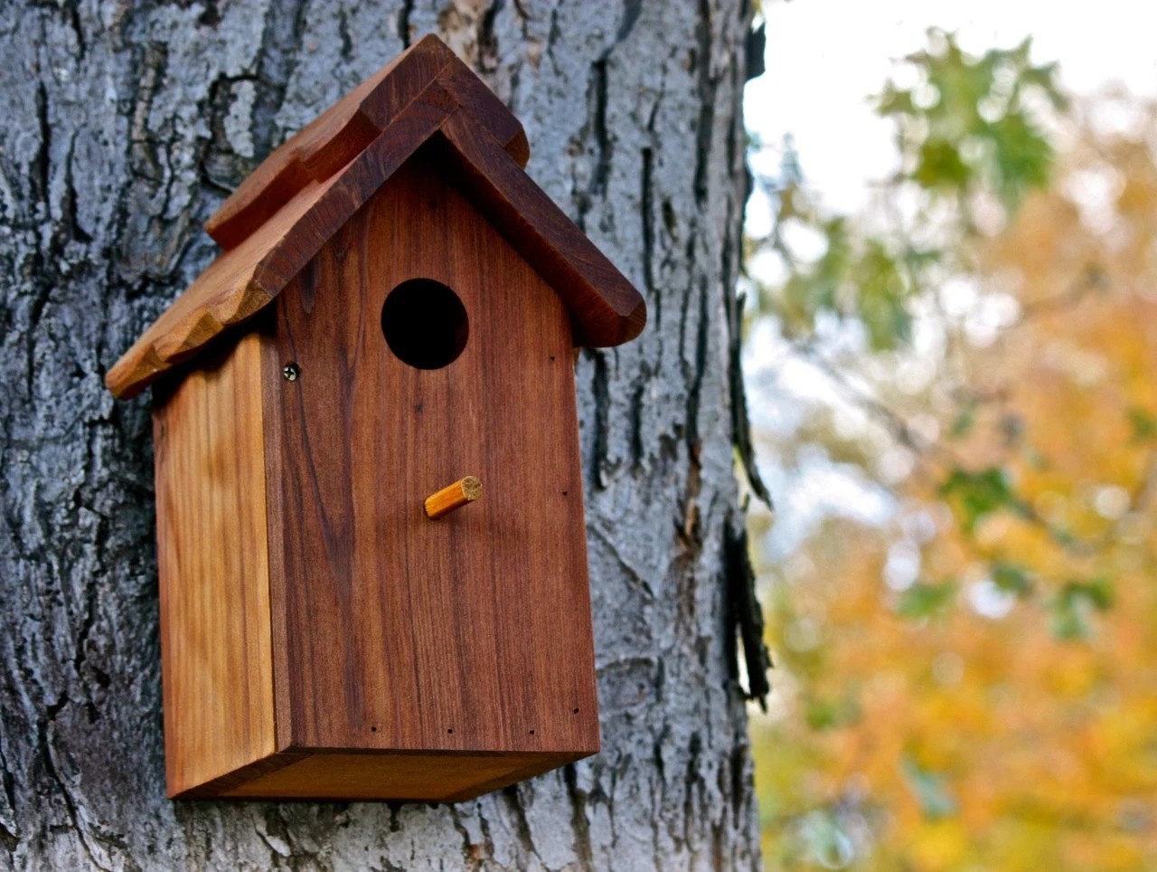 Wood Birdhouse / Nesting Box - Western Red Cedar