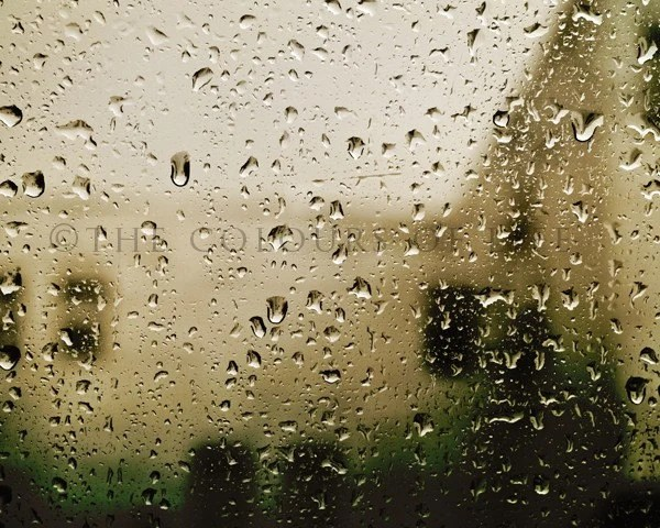 Original photograph - Rain drops