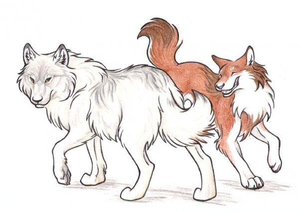 Lis W Chińskiej Mitologii Mitologia Kitsune 狐