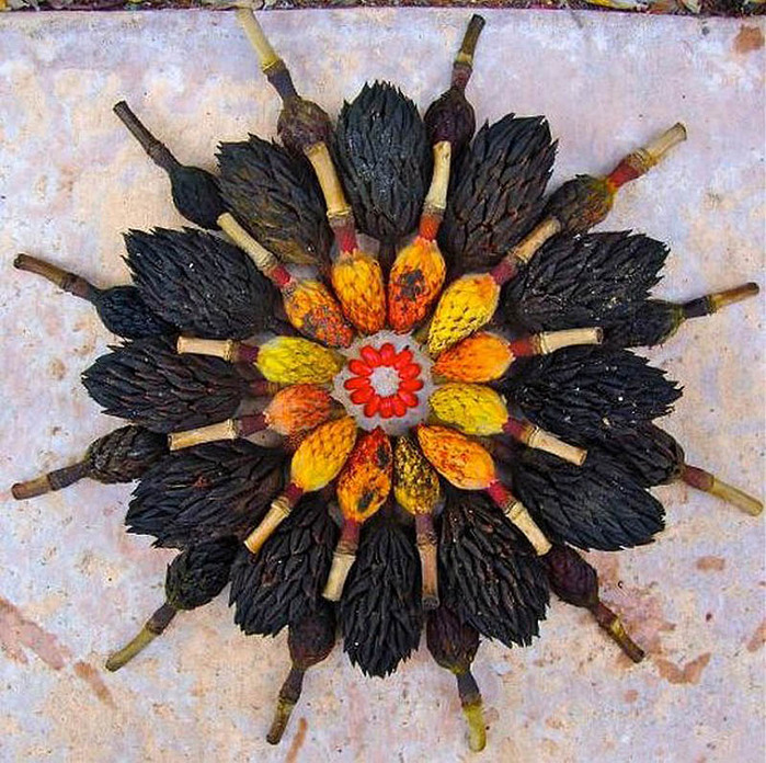 цветочные мандалы фото 35 (700x696, 209Kb)