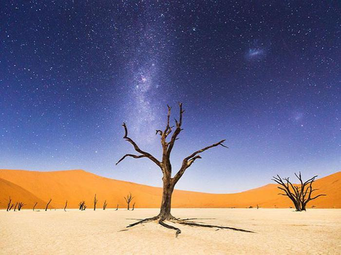 Лучшие фотографии августа 2015 от National Geographic