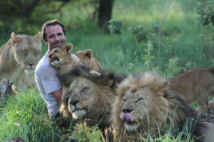 Как «заклинатель диких зверей» Кевин Ричардсон справляется с опасными хищниками