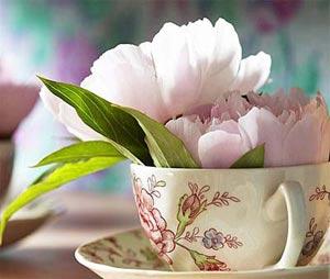 цветы в чашке 22 (300x254, 71Kb)