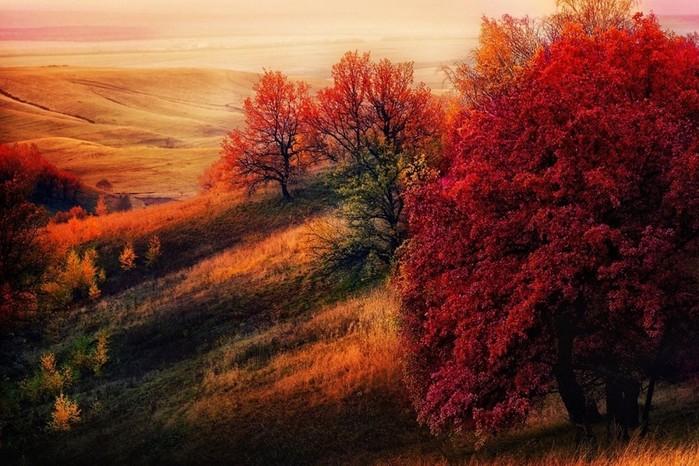 Великолепная осень в разных уголках мира