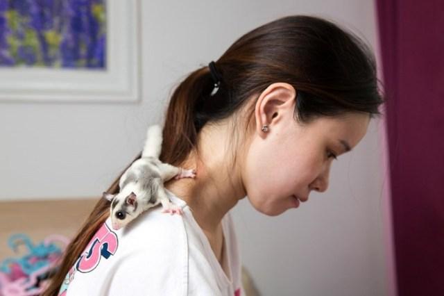 Китайские домашние животные: самые странные существа, которых держат в своей кроватке...