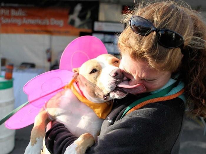 Веские причины завести собаку, подтвержденные научными исследованиями
