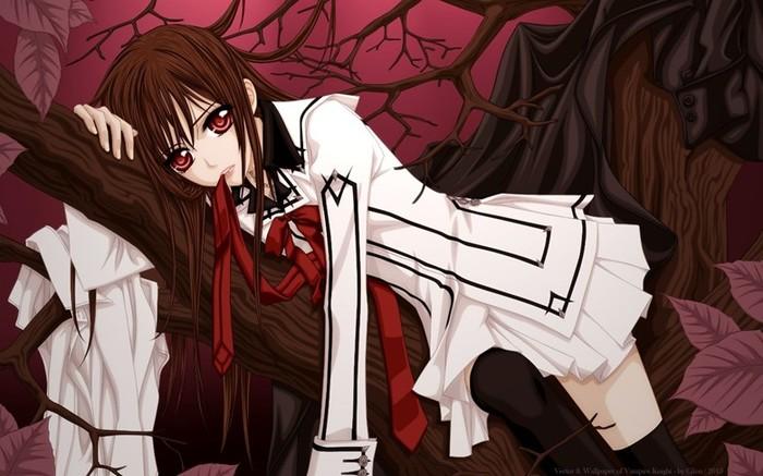 Японское супер аниме «Рыцарь вампир»