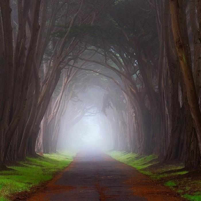 20 очаровательных фото о том, как выглядит тишина
