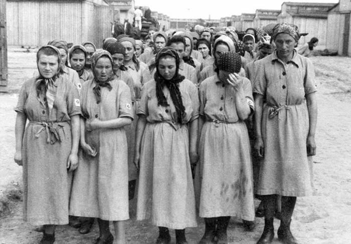 Бордель в лагере смерти «Освенцим»: к чему принуждали заключенных