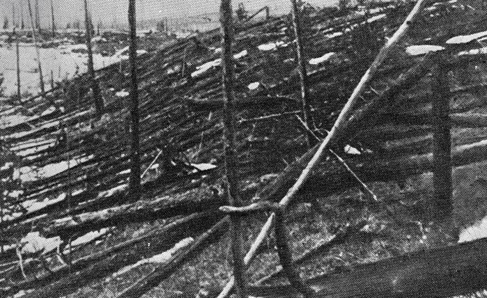 Падение тунгусского метеорита шокировало мир: основные факты и гипотезы космической катастрофы