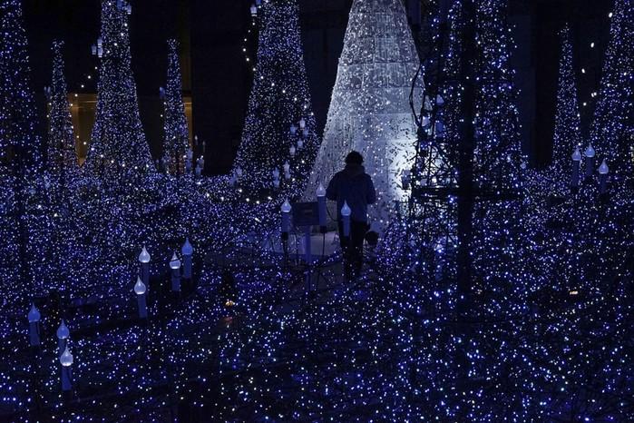 Предновогодние огни, рождественские елки и праздничные украшения по всему миру
