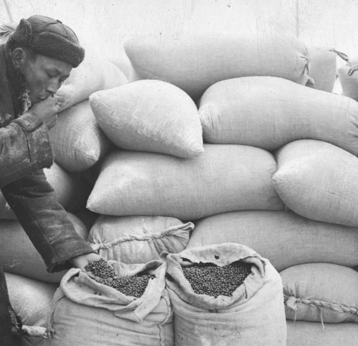 Тувинцы: почему во время войны немцы прозвали их «Чёрной смертью»