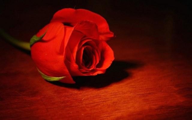 Кто из знаменитостей умер трагической смертью