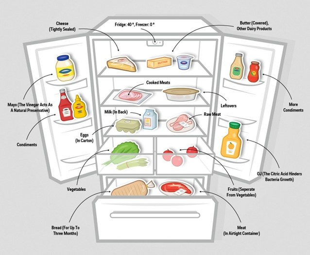 Как правильно разложить продукты в холодильнике