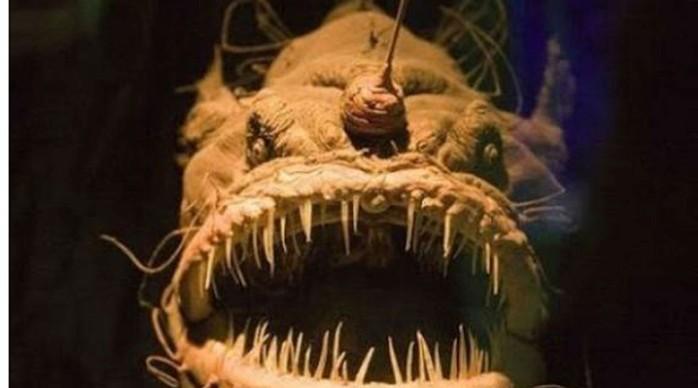 Создания, про которых можно снимать фильмы ужасов