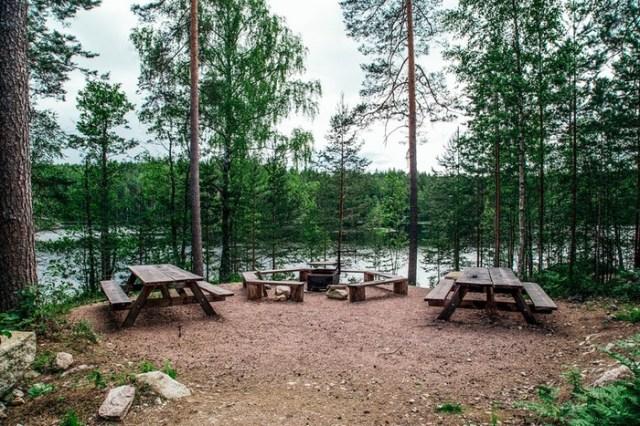 Как в Финляндии избавились от мусора на природе и лесных пожаров