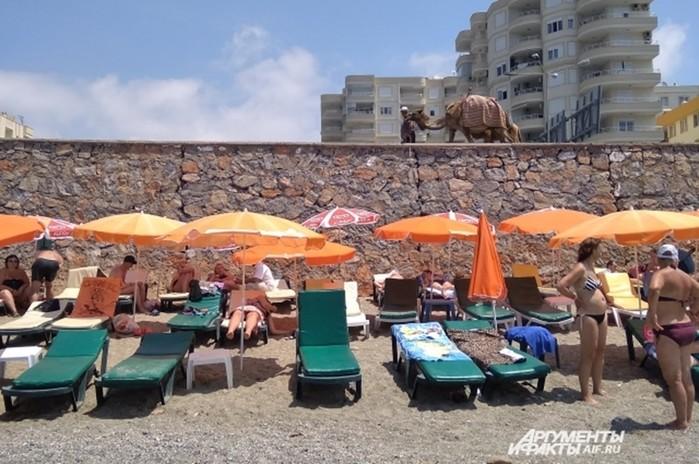 Как обманывают туристов в Турции: 9 распространенных «разводов» на курортах