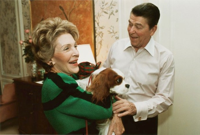 Первые собаки США: домашние любимцы американских президентов от Гардинга до Обамы