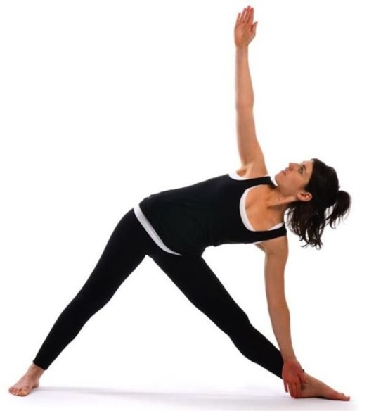 Позы для йоги: обзор позиций и комплексов асан