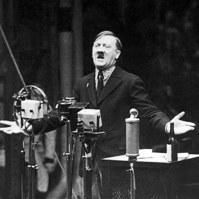 Почему Гитлер смог прийти к власти в Германии