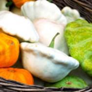 Все особенности диеты «Любимая» для снижения веса: виды, показания, отзывы, мнение врачей и другое