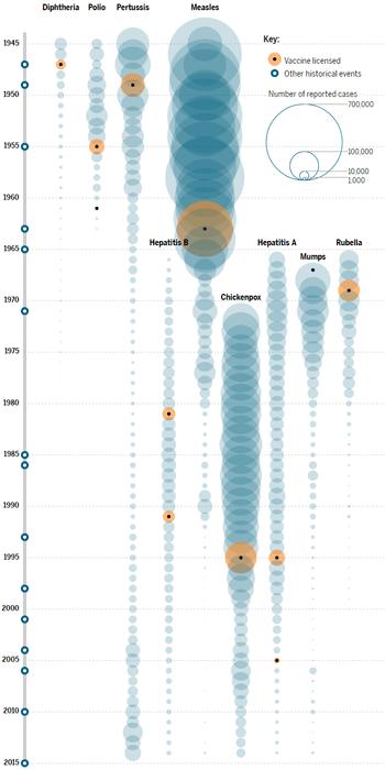 4 распространённых мифа о вакцинации: откуда они появились