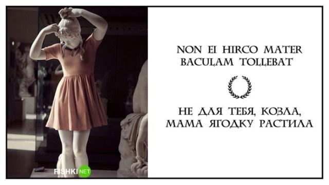 Я вам римским языком говорю, или Латынь по пацански