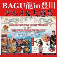 BAGU龍in豊川(砥鹿神社)
