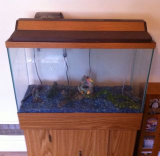 30 gallon fish tank weight - Meijer Pet Food & Supplies Fish