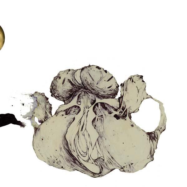 COIL / The Ape Of Naples (2LP)