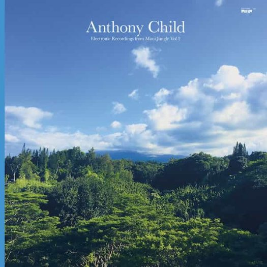 ANTHONY CHILD / Electronic Recordings From Maui Jungle Vol 2 (2LP)