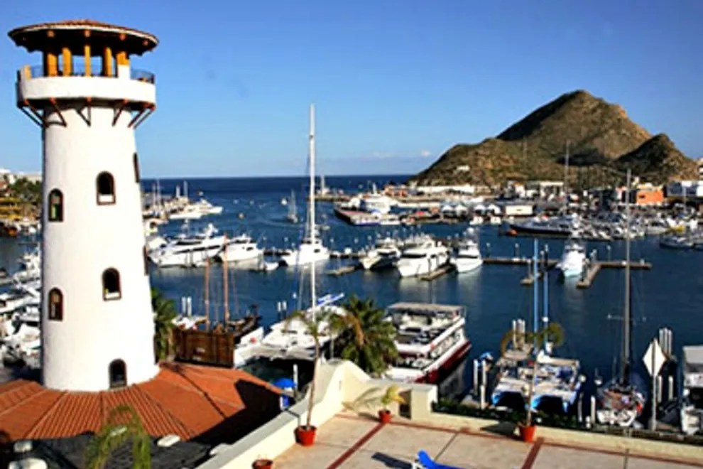 Things To Do In Marina Cabo San Lucas Neighborhood