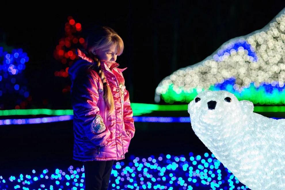 Zoo Lights Point Defiance Zoo