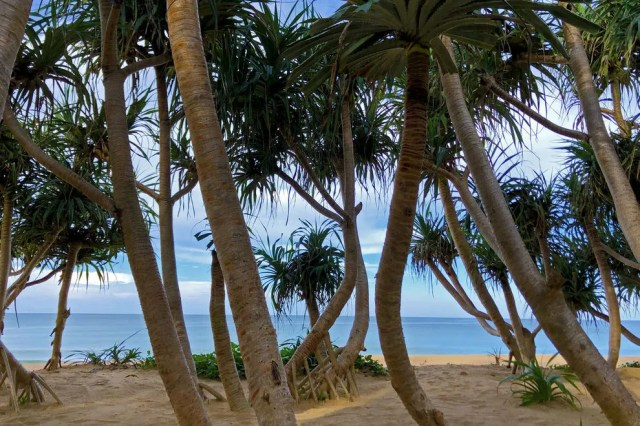 Kick back and relax under the palm tree-lined shores of Natai Beach