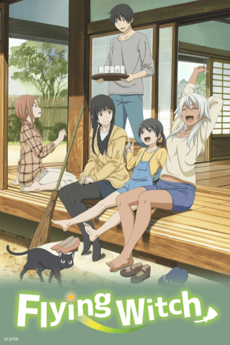 Flying Witch Review Box art