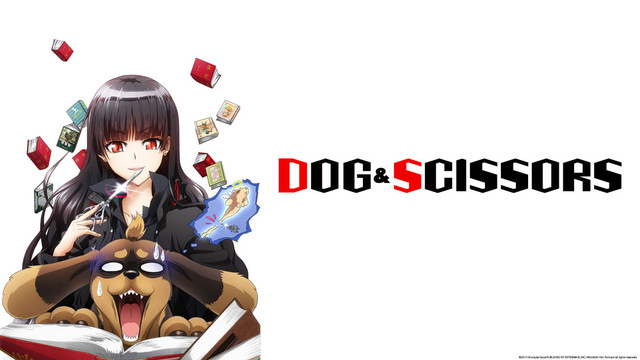 Image result for dog and scissors