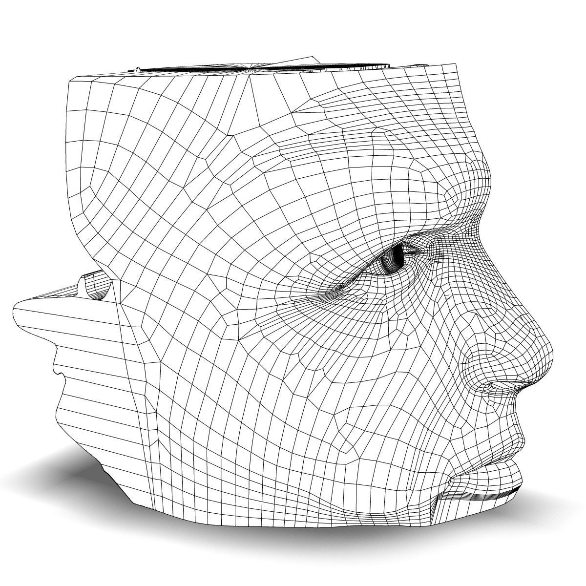 Human Nose Anatomy 3d Model Max Obj 3ds Fbx C4d Lwo Lw Lws