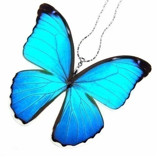 Real Butterfly Wing Necklace / Pendant (WHOLE Iridescent Blue Morpho Menelaus Butterfly - W021) - Buy 2 Get 1 Free