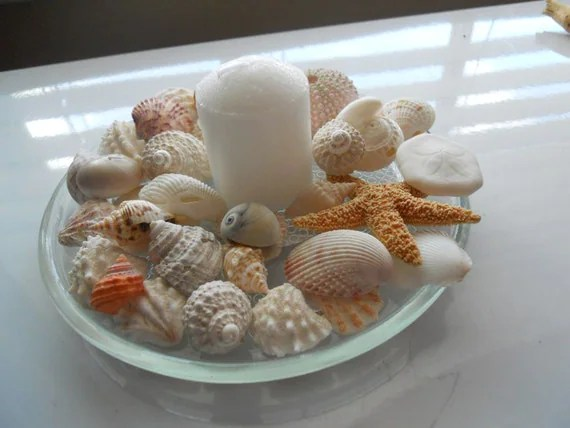Wedding Shower Table Decorations Beach Theme Seashell And