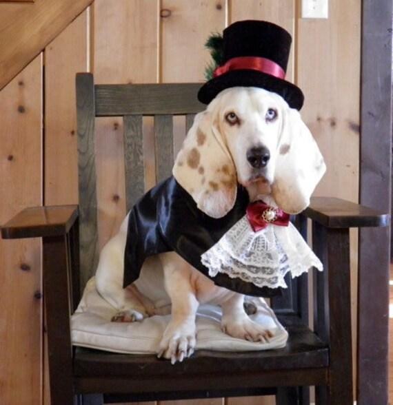 MattiOnline Dog Costume via Etsy