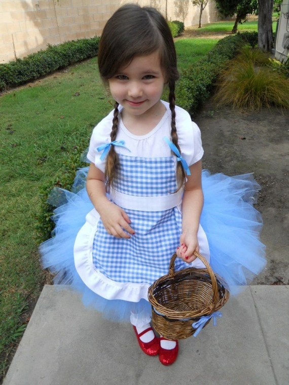 Dorothy Wizard of Oz Inspired Tutu Costume without Basket - peacelovecouture