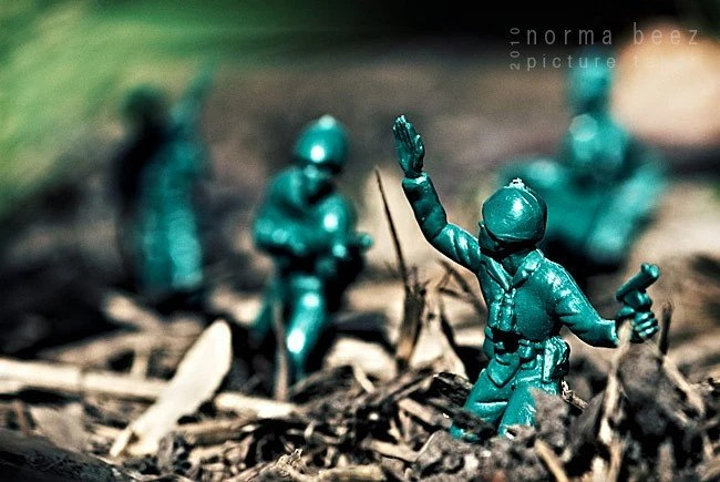 Into the Jungle - Army Men Series