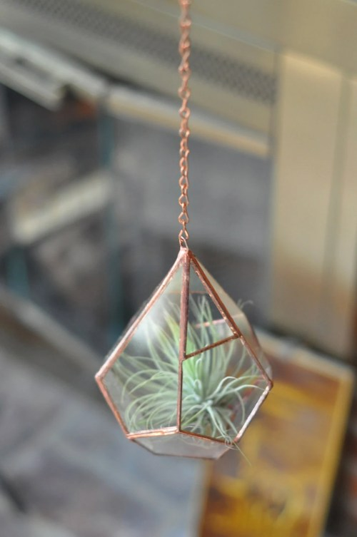 Planters for the Home Copper Hanging Plant Succulent Terrarium Hang It Up Plants
