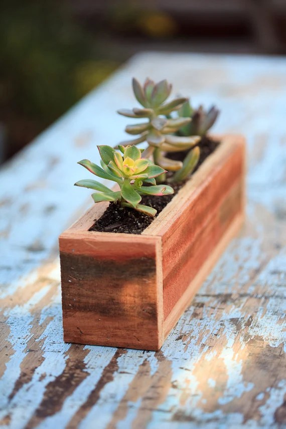 3x12 Succulent Planter Box Redwood Great For