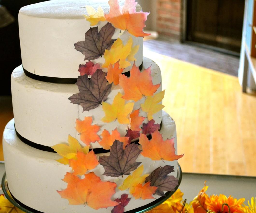 Edible Christmas Cake Decorations Australia